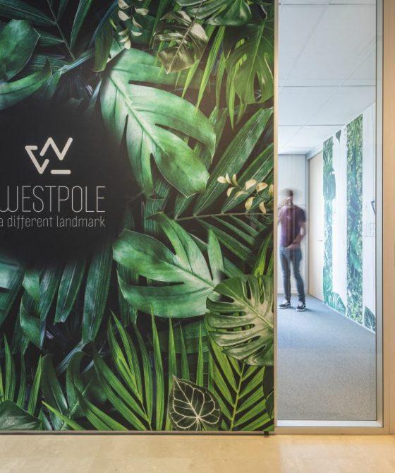 20210531_Aktual – Westpole_┬®Jeroen Willems_023